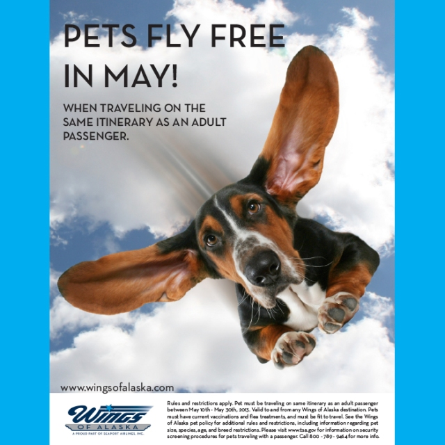 Pets Fly Free_Wings_Facebook